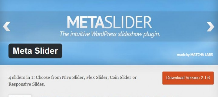 Meta Slider