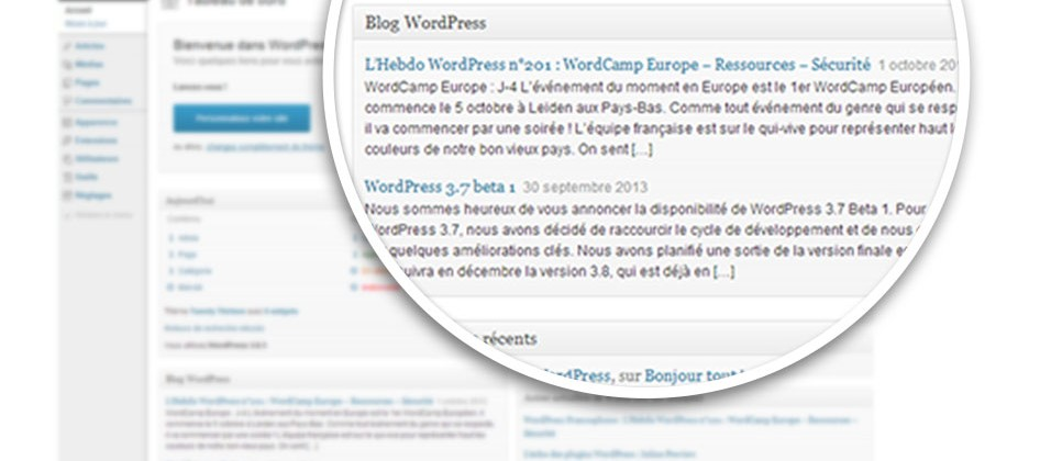 Leçon 2 : Découvrir le Tableau de Bord WordPress (1/2)